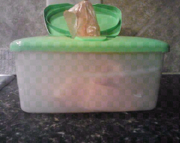 Upcycled Baby Wipes Container