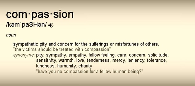 Difinition of Compassion #1000speak