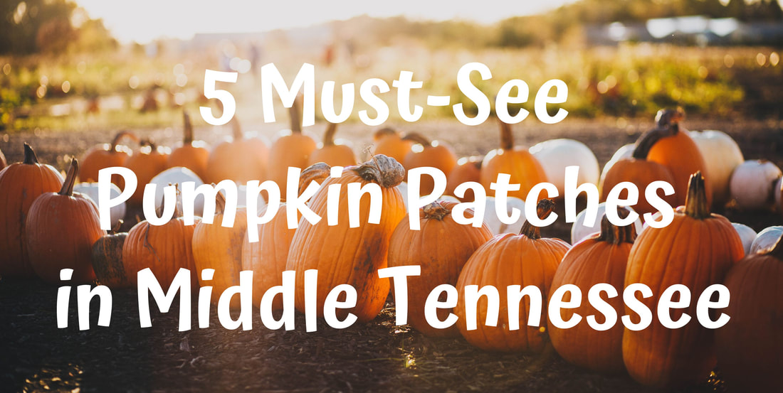 5 Must See Pumpkin Patches in Middle Tennessee