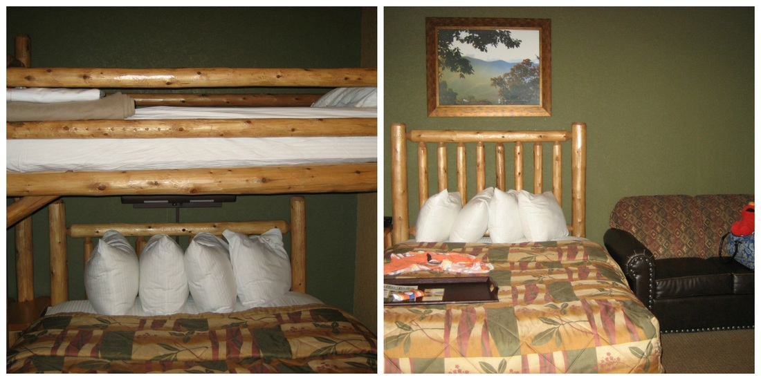 1 br deluxe suite at Wilderness at the Smokies