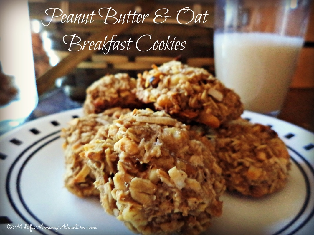 Healthy Peanut Butter & Oat Breakfast Cookies