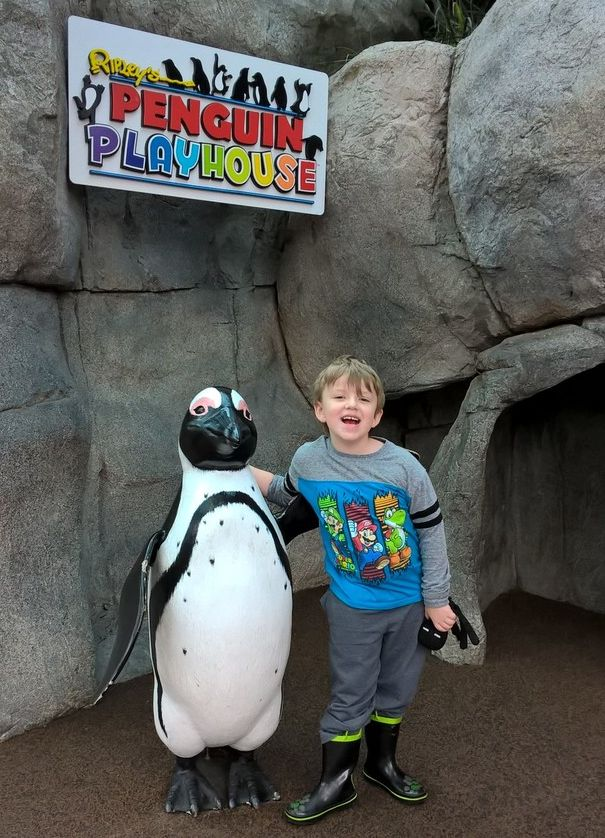 Check out our adventures at Ripley's Aquarium of the Smokies